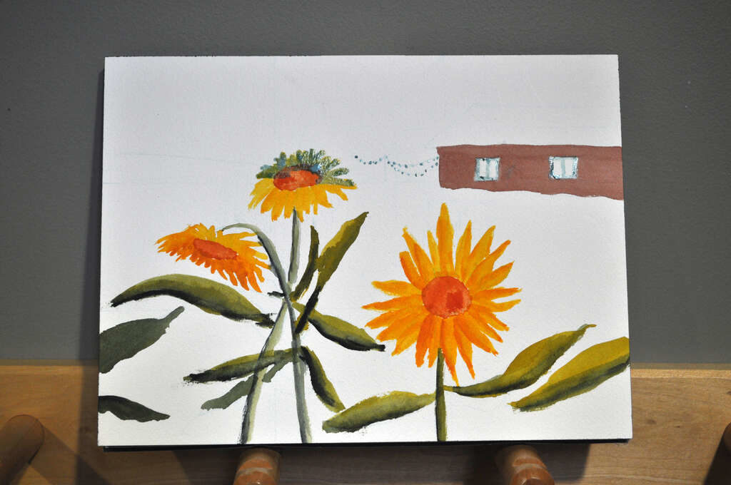 painting of sunflowers with barn and woods in background, applied masking fluid to protect areas from painting