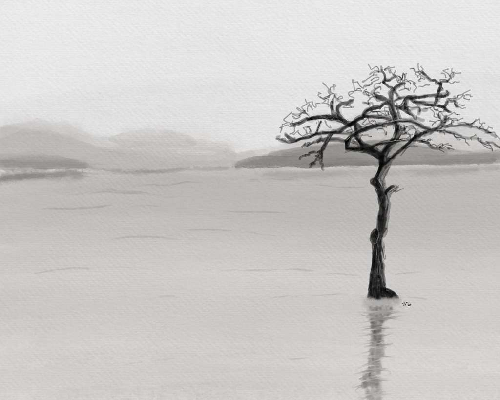 digital painting of a single tree in a lake, monochrome, moody