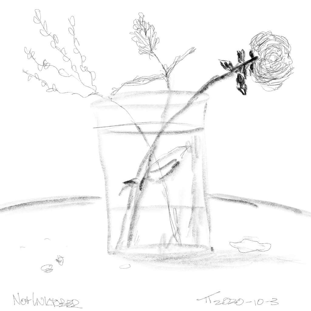 digital sketch of a vase, with water, and three flowers