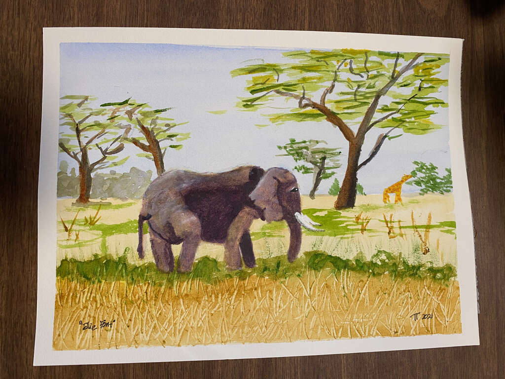 final version of watercolor painting depicting and elephant walking through grass on an African savana, and a giraffe in the background eating from a tree